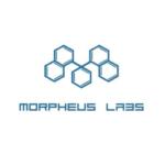 Morpheus Labs или сказ о том, как один из шерлоков решил на аирдропе срубить, а получилось как всегда