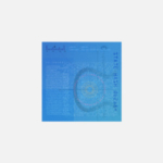 Обзор Coda Protocol — Pied Piper для блокчейна?